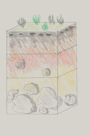 profil de sol 001 (3).jpg