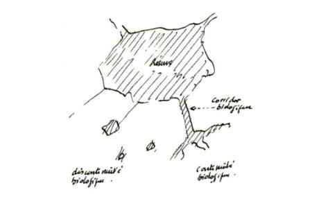 réserve - corridor.PNG